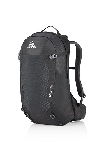 Gregory Mountain Products Men's Salvo 24 Liter Backpack, True Black, One Size ()