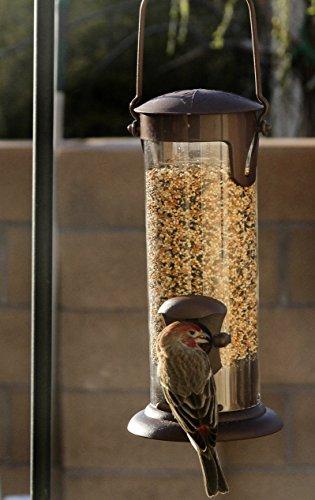 EzOne Window Bird Feeder Garden Backyard Outdoor Patio Hanging Tree 2 Station Perch For Sale