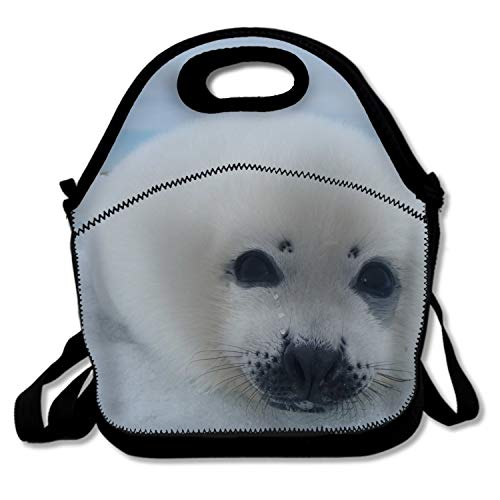 (Stylish Lunch Box Office Work Men Women Teens Boys Girls Harp Seals )