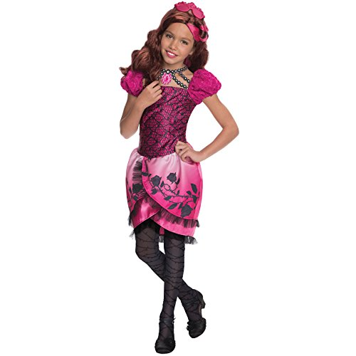 Ever After High Costumes Briar Beauty (EAH BRIA BEAUTY CHILD XL)