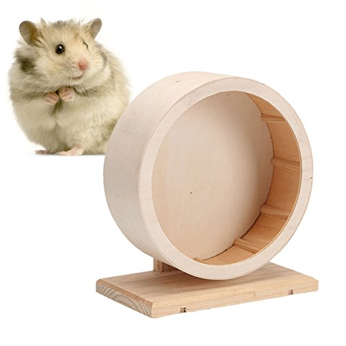- Legendog Wooden Wheel Toy, Hamster Exercise Toy Interactive Natural Hamster Toys for Small Animals M