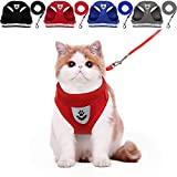 YujueShop Cat Harness and Leash Dog Harness Walking Adjustable Soft Mesh Pet Vest with Lead Re-Adjustable Pet Leash with Reflective Material and Metal Button Suit for Most Sizes of Pet (Red, XL)