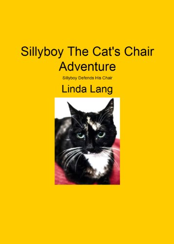 Sillyboy The Cats Chair Adventure