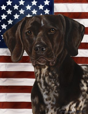 German Shorthair Pointer – Best of Breed Patriotic II Large Flags
