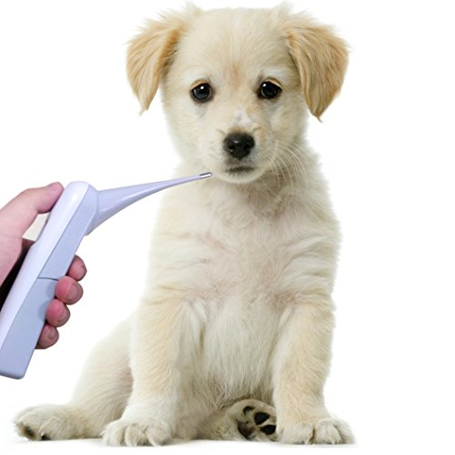 Digital Pet Thermometer For Cat, Dog, Cow, Birds, Horse, Digital Vet Thermometer monitor animal Temperature fastly, C/F switchable