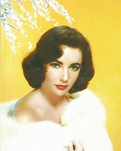 Ivanhoe Robert Taylor (Elizabeth Taylor bare shoulders in fur - 8 x 10 Photo 004)