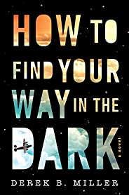 How to Find Your Way in the Dark (1) (A Sheldon Horowitz Novel)
