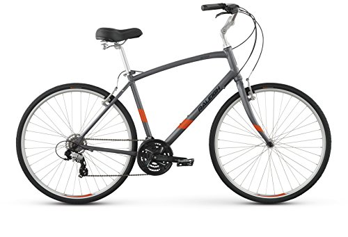 "Raleigh Detour 2 Comfort Bike, 21"" /XL, Silver, 21"" / X-Large"