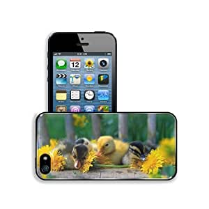 Animals Ducks Duckling Yellow Flowers Apple iPhone 5 / 5S Snap Cover Premium Aluminium Design Back Plate Case - Candy Case