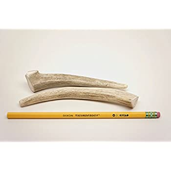 Pet Supplies : Deer antlers dog chews for small dogs - TWO