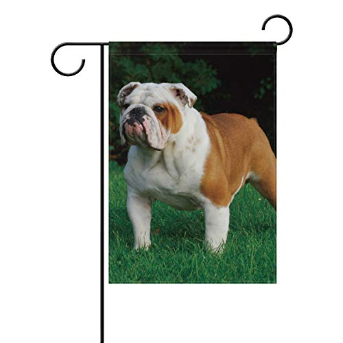 Ainans Decorative Hello Welcome Bulldog Terrier Garden Yard Flag Banner for Outside House Flower Pot Double Side Print 40 x 28 & 12 x 18 Inch Black