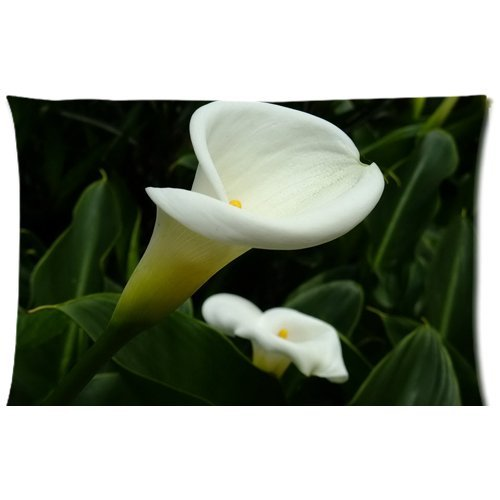 Bordered Calla Lilies (Calla Lily Plant (Pattern) Custom Pillow Case Cushion Cover 20 X 30 Inch (Twin Sides) Calla Lily Plant)