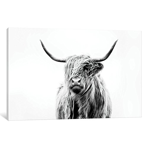 iCanvasART DFU4-1PC3-18x12 Portrait Of A Highland Cow Gallery Wrapped Canvas Art Print by Dorit Fuhg, 12
