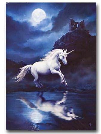 Anne stokes greeting cards moonlight unicorn amazon office anne stokes greeting cards moonlight unicorn m4hsunfo