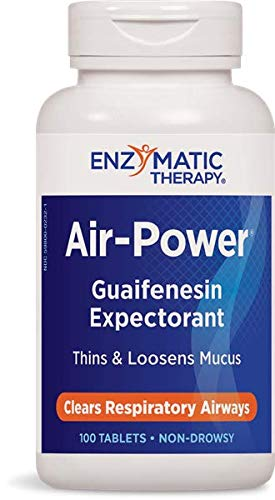 Enzymatic Therapy - Air-Power, 100 tablets [Health and Beauty]