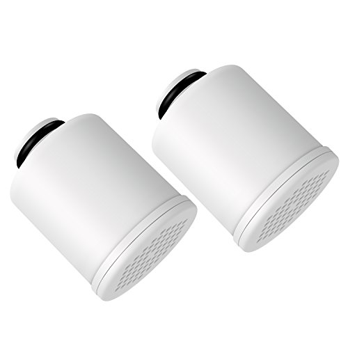 AQUACREST FXSCH Replacement for GE FXSCH Heap Filter(Pack of 2)