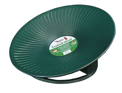 "Treadmill Wheel (11"" Green) : All-Metal Exercise Wheel for Chinchillas, Prairie Dogs, Rats, Hedgehogs, Sugar Gliders, Squirrels, Degus, Hamsters & Other Small Animals - Smooth, Fast, Silent, Durable"