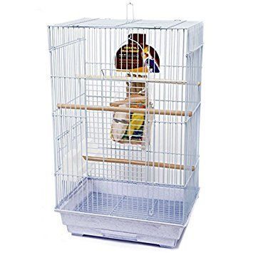 Penn Plax Bird Cage Starter Kit, Cage with Toys, Treats, Games, Ladder, and Wood Perch for Medium Sized Birds (Starter Bird Cage)