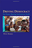 Driving Democracy: Do Power-Sharing Institutions Work?