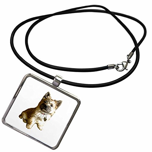 3dRose Scenes from The Past Ephemera - The Cutest Cairn Terrier in The World Cuter Than Toto Wizard of Oz - Necklace with Rectangle Pendant (ncl_244031_1) -
