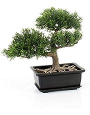artplants.de Konstgjord bonsai ceder i kruka, 9 tum/22 cm - plastbonsai - hotelldekoration