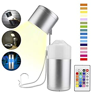 BIGLIGHT Wireless Battery Powered Bedside Touch Light, Dimmable Table Light for Reading Study, Color Changing Push Night Light, RGB Mood Lighting, Desk Lamp with Remote, Portable Camping Lantern