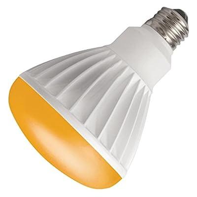 TCP 27053 - LED12BR30DAMB BR30 Flood LED Light Bulb