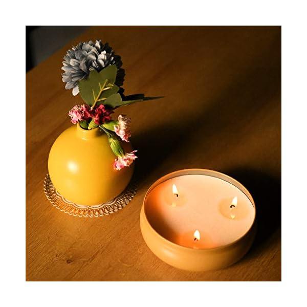 419 MALNL1L Aku Tonpa Citronella-Kerzen für den Innen- und Außenbereich, 382 g, 3 Dochte, Sojawachs, tragbare Reisedose, Geschenk…