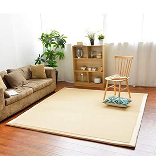 Solid Rectangular Area Rugs Soft Living Room Children Bedroom Rug Coral Fleece Anti-Slip Carpets Home Decor Modern Indoor Outdoor Runners Nursery Rugs 8' X 10'
