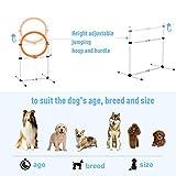 PawHut 3PC Portable Pet Agility Pet Training Set