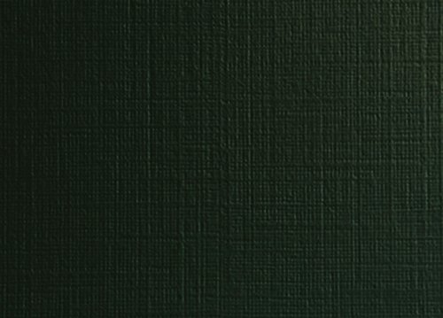 Carnival Linen Forest Green 80# Cover 11''x17''