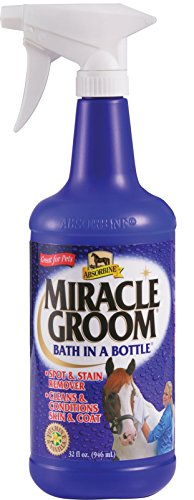 W F Young Miracle Groom with Sprayer