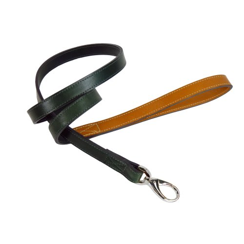 Hartman & Rose Hartman Dog Lead, 3/4-Inch, Ivy Green with Tan Handle by Hartman & Rose