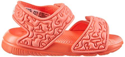 adidas Unisex-Kinder Disney Nemo AltaSwim Gladiator Sandalen Orange (Corsen/ftwbla/corsen)