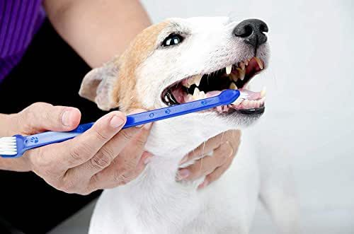 Pets First Softest Bristle Dog Toothbrush Extra Large Long Double Sided for Small & Large Teeth - Set of 2