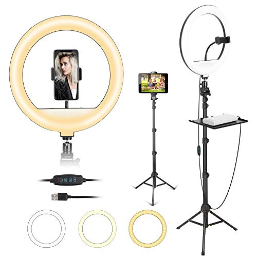 12'' Ring Light with Tripod Stand and Cellphone Phone Tablet Holder,Dimmable Ring Light for TikTok/Live Stream/Makeup/YouTube Video, Compatible with iPhone/Android