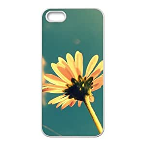 Diy For Iphone 4/4s Case Cover (flowers Colorful) PC New Arrival Wonderful case Runing's case