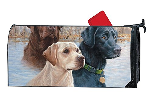 Dimanzo Magnetic Mailbox Cover - Spring Themed Welcome Home Mailbox Wrap with Decorative Labrador Retrievers, Standard Sized,17.25 x 20.75 Inches by Dimanzo