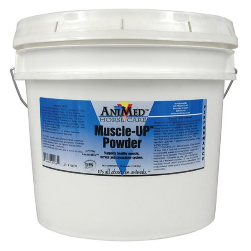 Cheapest AniMed Muscle-Up with Probiotics for Horses, 25-Pound Check this out.