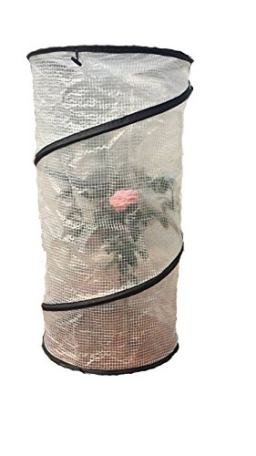 pop-up-plant-cover-frost-protector-tomato-accelerator