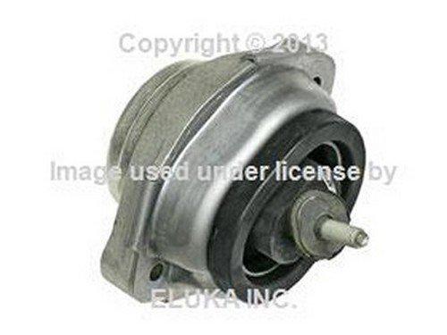 2 X BMW OEM Engine Suspension Damper Rubber Mount Left Right E53 6770793 X5 4.4i X5 4.6is X5 (Engine Mount Damper)