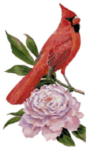 Indiana State Bird (Northern Cardinal) and Flower (Peony) Counted Cross Stitch Pattern
