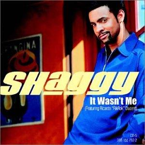Shaggy - It Wasn