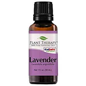 Plant Therapy Lavender Essential Oil 100% Pure, Undiluted, Natural Aromatherapy, Therapeutic Grade 30 mL (1 oz)