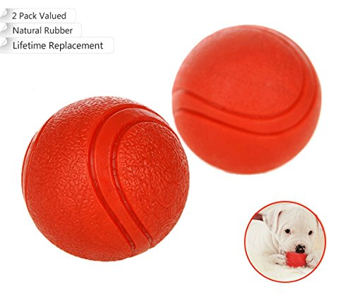 Bojafa Puppy Small Medium Large Dog Toys Balls Solid (2 Pack) Rubber Indestructible Durable Tough Dog Chew Toys Gift for Aggressive Chewers