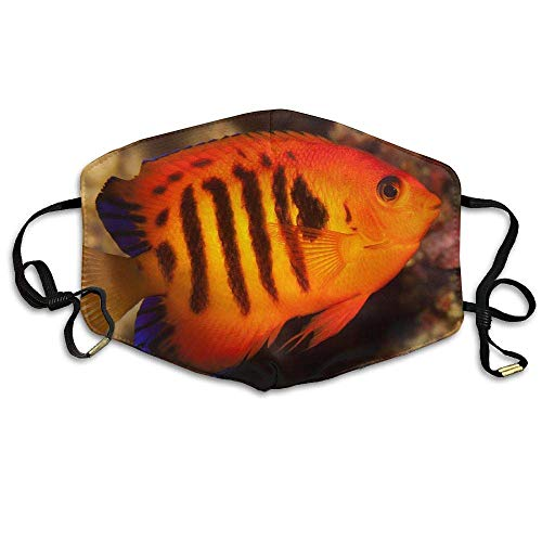 (FFR-EHC Dwarf Saltwater Angelfish Printed Mask Neutral Mask Safety Masks Eco-Friendly Breathable Print Unisex Polyester Dust-Proof Breathable Mask)