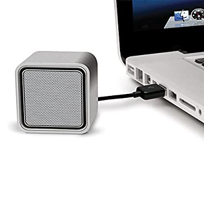 iLuv Compact USB-powered stereo speakers for Mac and PC laptop-Silver by jWIN