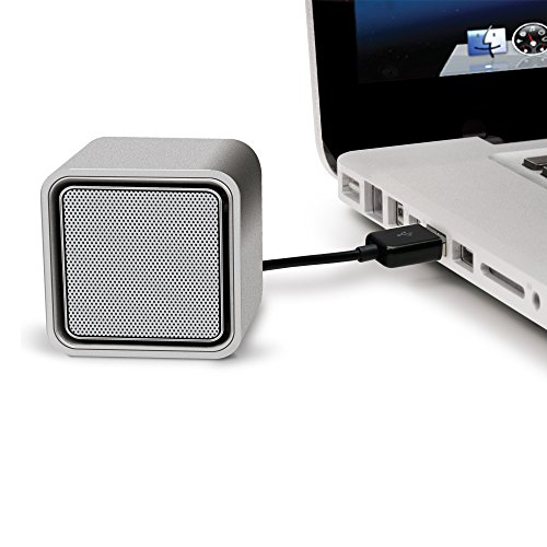 iLuv Compact USB-powered stereo speakers for Mac and PC laptop-Silver (Computer Speakers Mac)
