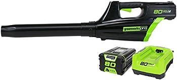 GreenWorks GBL80300 80V Cordless Leaf Blower