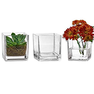 PARNOO Set of 3 Glass Square Vases 4 x 4 Inch - Clear Cube Shape Flower Vase, Candle Holders - Perfect as a Wedding Centerpieces, Home Decoration